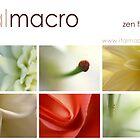 """Zen Flowers"" Calendar 2008 by italmacro. by italmacro"