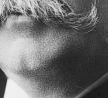 Extreme closeup of William Howard Taft's face Sticker