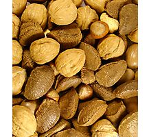 Mixed Nuts Photographic Print