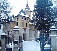 Church covered with snow by queensoft