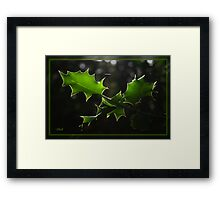 Holly Silhouette Framed Print