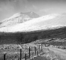 Leach Doire Lochaidh  by Tim Haynes