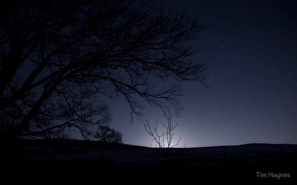 Moonrise, Monzie, Perthshire by Tim Haynes