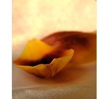 Incomplete Photographic Print
