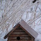 Winters Cabin  by Moninne Hardie