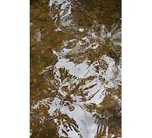 Reflected Leaves Photographic Print
