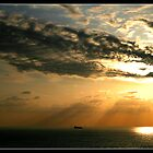 Rays by Georgi Bitar