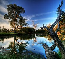 By the Pond by smylie