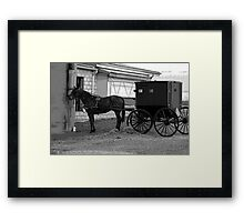 Amish Horse And Carriage Framed Print
