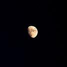 Mr. Moon by Ferguson