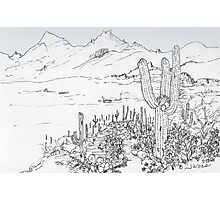 Hiking in the Rincon Mountains of Southern Arizona Photographic Print