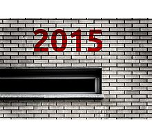 2015 brick work Photographic Print