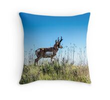 Pronghorn King of the Mountain Throw Pillow