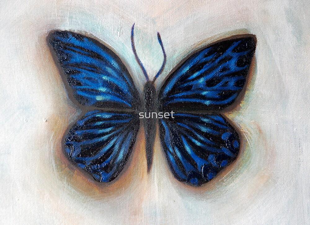 the influence of butterflies by Sam Van