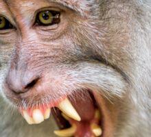 Grumpy Monkey Sticker