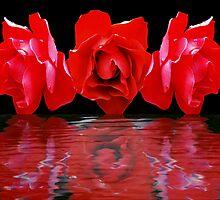 Fabulous Flowers by Gregory Ewanowich