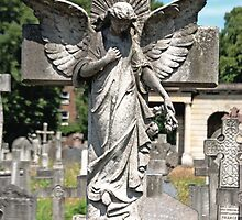 Angel with bowed head Brompton Cemetery by joelmeadows1