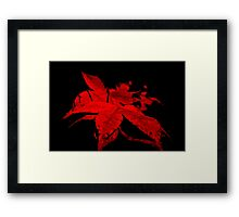 Red wine nature Framed Print