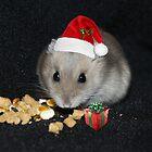 Oreo Ready for Santa by AnnDixon