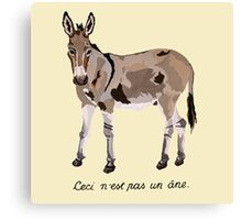 This is not a donkey Canvas Print