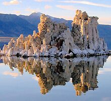 Mono Lake Tufa by Colette Hope Marks