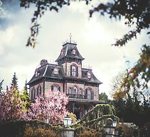 Phantom Manor Au Printemps by Austen Risolvato