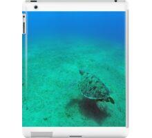green sea turtle (Chelonia mydas)  iPad Case/Skin