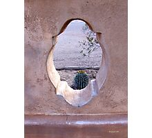 Nature Framed Photographic Print