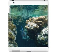 coral reef and tropical fish iPad Case/Skin