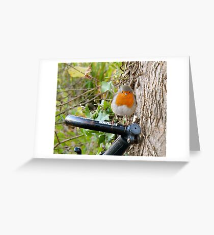 SOLD - HAPPY NEW YEAR! Greeting Card