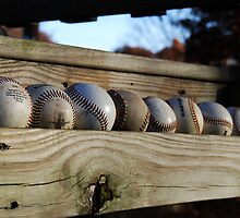 spring training by Geri Bragg
