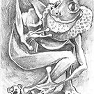 The Frog King by David Mueller