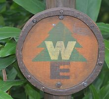 Disney Pixar UP Wilderness Explorer Russell Badge Ellie by notheothereye