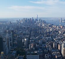 View from Empire State building New York  by Jack Nolan