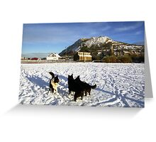 Snow pals Greeting Card