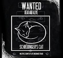 Wanted: Schrödinger's Cat by CallinghamM