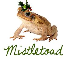 Mistletoad by heroics