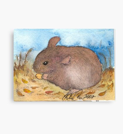 Mouse pen and ink Illustration Canvas Print