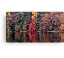 autumn in Lower Michigan #2 Canvas Print