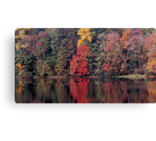 autumn in Lower Michigan #2 Canvas Print