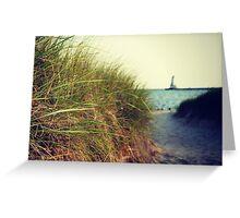 Lake Michigan dune grass Greeting Card