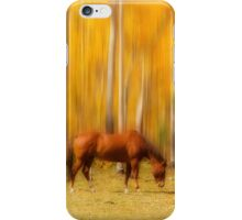 Mystic Horses  iPhone Case/Skin