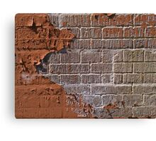 Textured red bricks wall Canvas Print