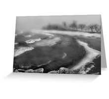 Snowstorm in B&W Greeting Card