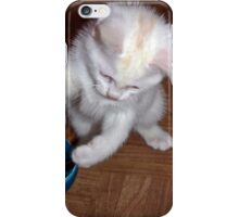 Playful Kitten A iPhone Case/Skin