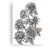 Roses in Pencil Canvas Print