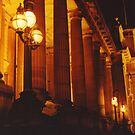 Treasury by night by friartuck