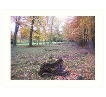Wild life Park Dusseldorf Art Print