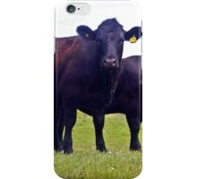 Cley Cows A iPhone Case/Skin