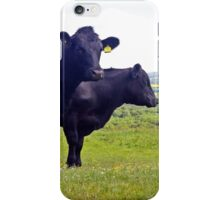 Cley Cows Too A iPhone Case/Skin